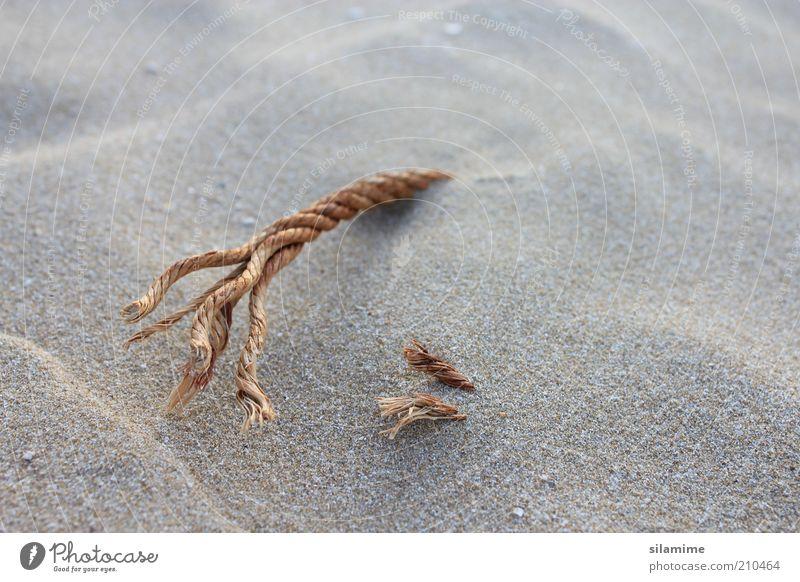 Natur Sommer Strand Ferien & Urlaub & Reisen Einsamkeit Erholung Sand braun klein Umwelt Seil Erde Hoffnung Tourismus geheimnisvoll natürlich
