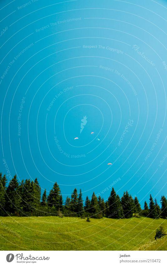 los, lass uns fliegen! Gleitschirmfliegen Wolkenloser Himmel Baum Wiese Hügel blau grün Sehnsucht Fernweh Zufriedenheit Mut Ferne 4 Außenaufnahme Menschenleer