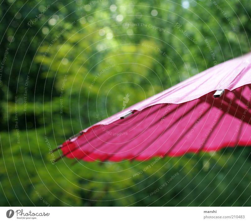 sunshining day Freizeit & Hobby Garten Park grün rosa Sonnenschirm Papier Baum Natur Sommer sommerlich Sommertag Farbfoto Außenaufnahme Schutz Wetterschutz