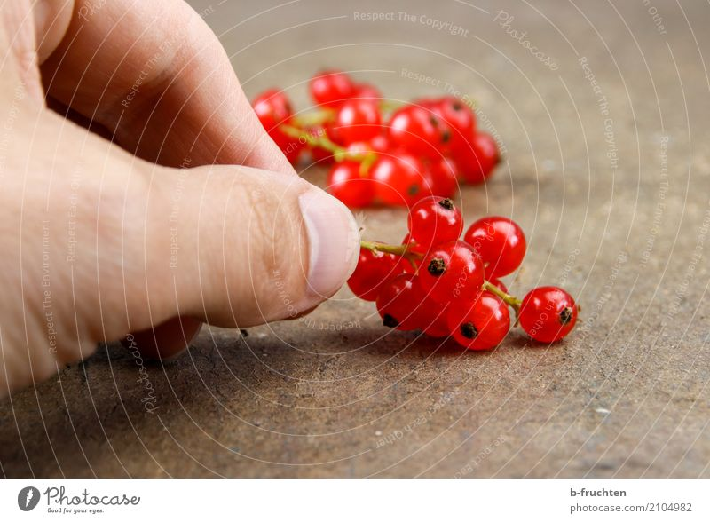 kleine Vitamine Frucht Bioprodukte Vegetarische Ernährung Diät Mann Erwachsene Hand Finger 30-45 Jahre festhalten Fröhlichkeit frisch Gesundheit rot