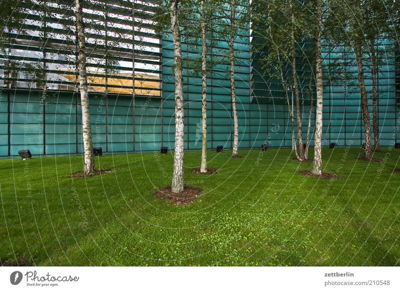 Nordische Botschaften Haus Wiese Architektur Gras hell Fassade Rasen Bauwerk Bildausschnitt Lamelle Skandinavien Gebäude Wald nordisch Lamellenjalousie