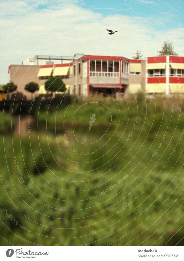 LaLaLand Himmel grün Haus Farbe Wiese Gebäude Landschaft Vogel Architektur Umwelt Mehrfamilienhaus