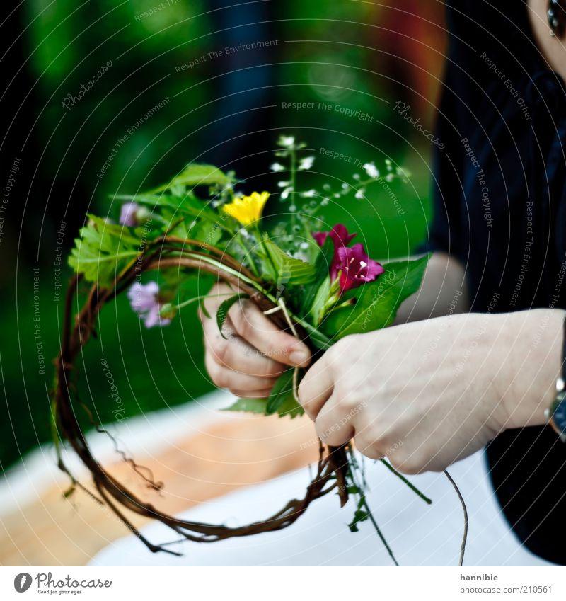 bekränzung Frau Mensch Hand Blume grün Pflanze Sommer Freude Blatt gelb Blüte braun Erwachsene Lebensfreude natürlich Duft