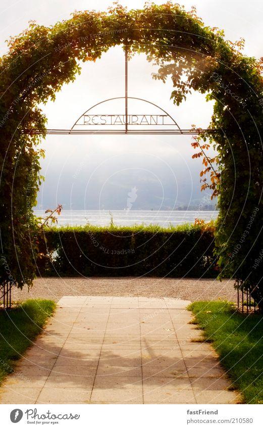 Appetit auf einen guten Ausblick Wasser Himmel Pflanze Erholung Berge u. Gebirge Garten Wege & Pfade See Park Wärme elegant ästhetisch Wachstum Sträucher Alpen