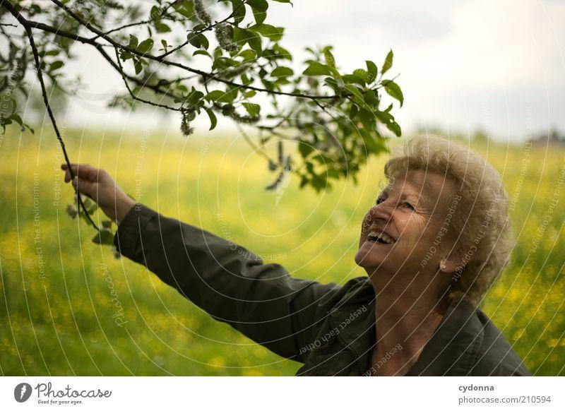 Lebenslust Mensch Frau Natur Blatt Freude Erwachsene Gefühle Senior Wiese Glück lachen Zeit Freiheit Lifestyle träumen