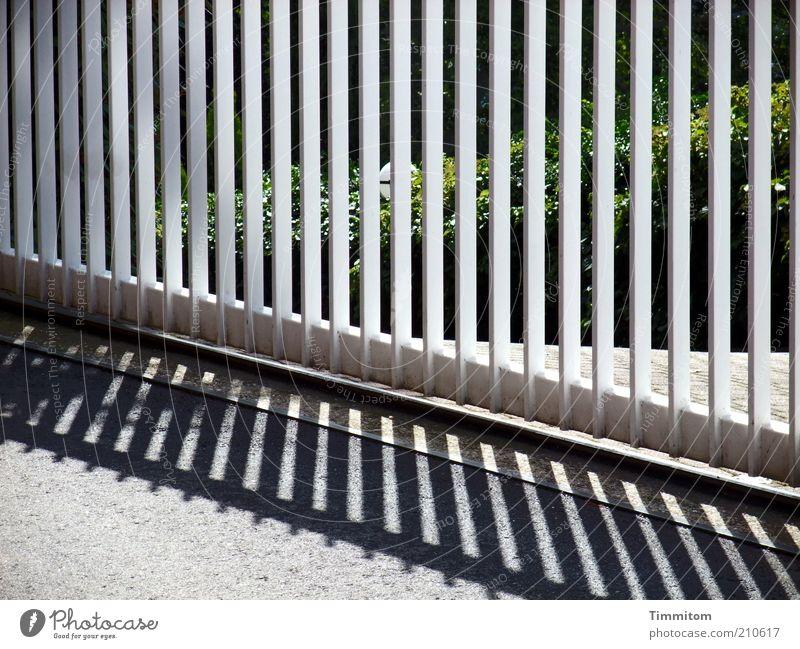 Ein Tor mit Licht und Schatten Metall Sicherheit ästhetisch Schutz fest Stahl Geometrie Symmetrie Bildausschnitt Begrenzung robust aussperren Ordnungsliebe