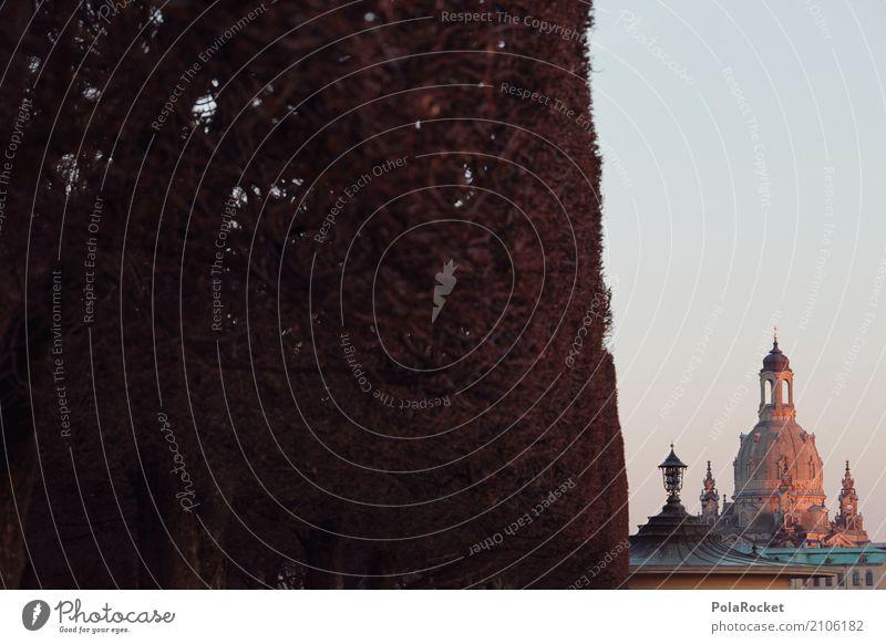 #A# Dresdner Schnitt Kunst ästhetisch Dresden Frauenkirche Kuppeldach Wahrzeichen Sehenswürdigkeit Städtereise Tourismus Sachsen Deutschland Hecke Silhouette