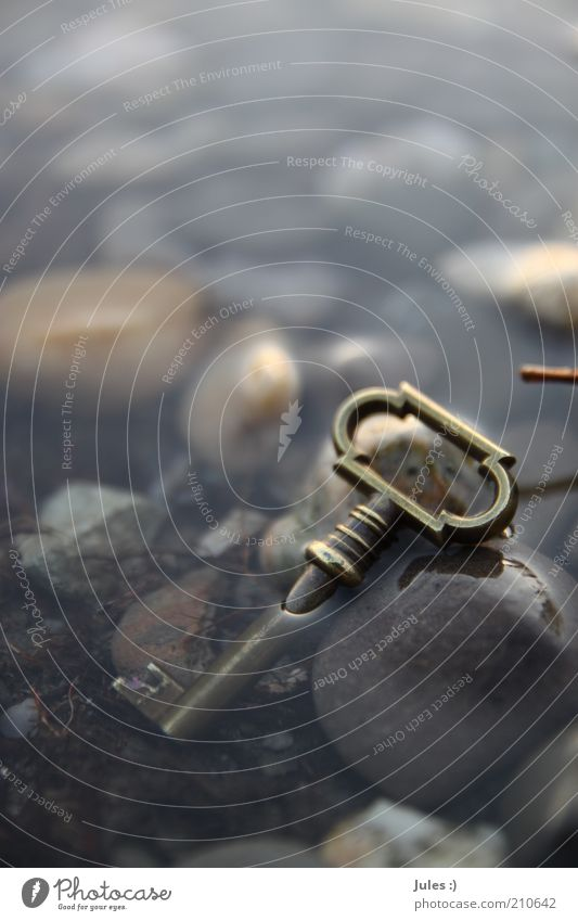 Verschlüsselt Stil Design Kunst Natur Erde Wasser Menschenleer Stein Stahl Schlüssel außergewöhnlich authentisch einfach fantastisch glänzend nah gold