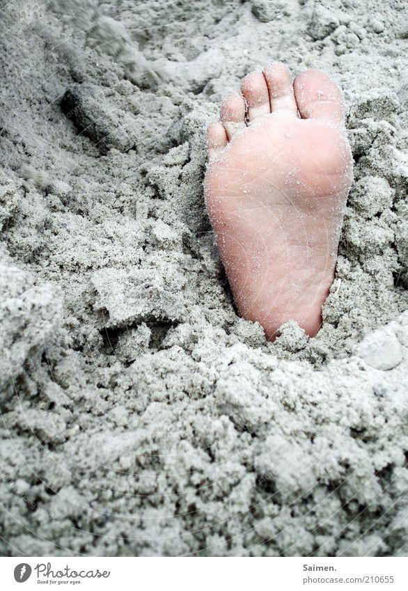 eingebuddellt Kind Fuß Sand Strand Zehen Fußsohle Farbfoto Außenaufnahme Nahaufnahme Detailaufnahme Tag Kinderfuß vergraben Kitzel Barfuß
