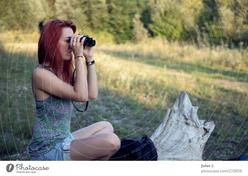 Weltblick. der 2te feminin 1 Mensch Natur rothaarig langhaarig Fernglas beobachten Denken Erholung hocken Optimismus Baumstamm Top Interesse Konzentration