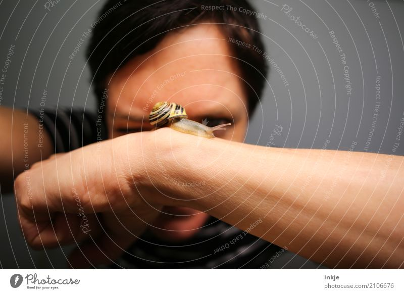 Schnecken|tempo 1 Lifestyle Freizeit & Hobby Frau Erwachsene Leben Gesicht Auge Arme Mensch Tier Wildtier beobachten Blick klein nah Gefühle Tierliebe achtsam