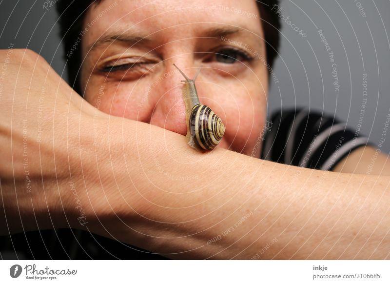 Schnecken tempo 3 Mensch Frau Tier Gesicht Erwachsene Leben Lifestyle lustig klein Wildtier Lächeln Arme Nase Neugier Zusammenhalt Gelassenheit