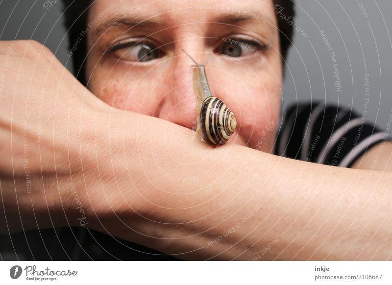 Schnecken|tempo 4 Lifestyle Freude Frau Erwachsene Leben Gesicht Nase 1 Mensch Tier Wildtier beobachten Blick klein lustig nah nass Gefühle Tierliebe achtsam