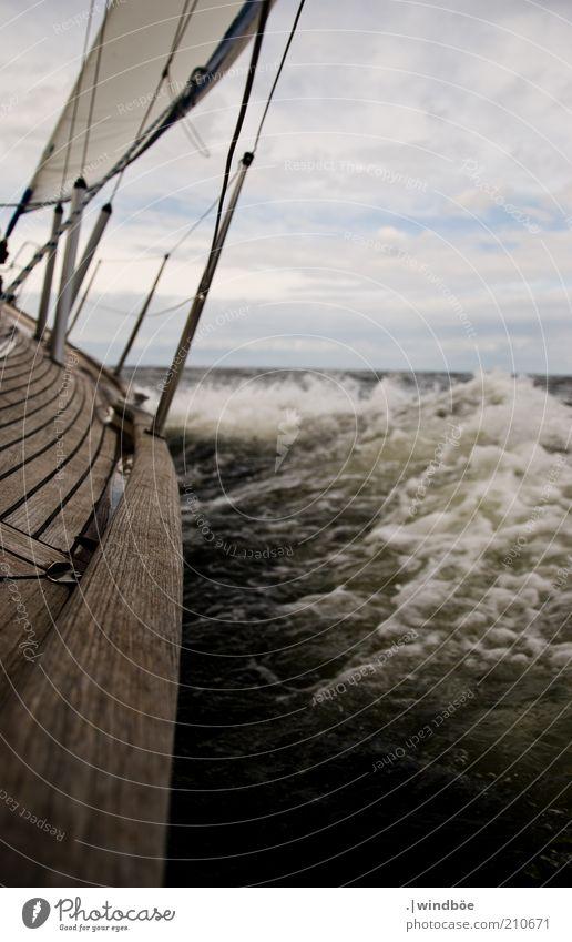 Den Horizont im Blick Ausflug Abenteuer Ferne Freiheit Sommer Meer Wellen Wassersport Segeln Natur Wolken Wetter Wind Sturm Ostsee Verkehr Jacht Segelboot