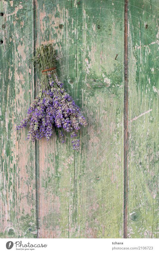Lavendel Kräuter & Gewürze Design Dekoration & Verzierung Natur Pflanze Blume Blatt Blüte Blumenstrauß Holz alt frisch natürlich braun grün Tür Konsistenz