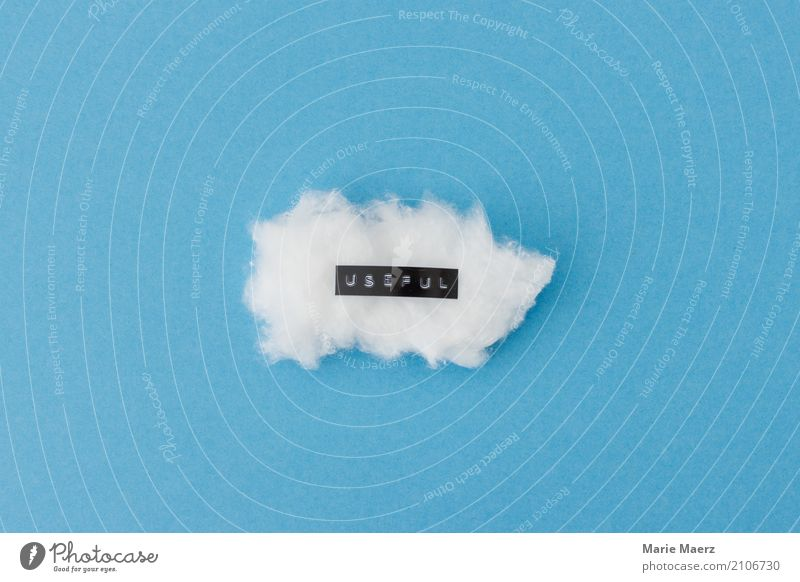 Nützlicher Gedanke Gesundheit beobachten Denken Erholung träumen frei natürlich blau weiß Kraft achtsam Gelassenheit ruhig Freiheit Frieden Verstand