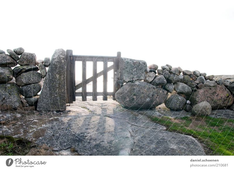 Gartentörchen rustikal alt Holz Stein Mauer hell Zukunft natürlich außergewöhnlich Tor Grenze Zaun Schönes Wetter Natur Tür Zugang Steinmauer