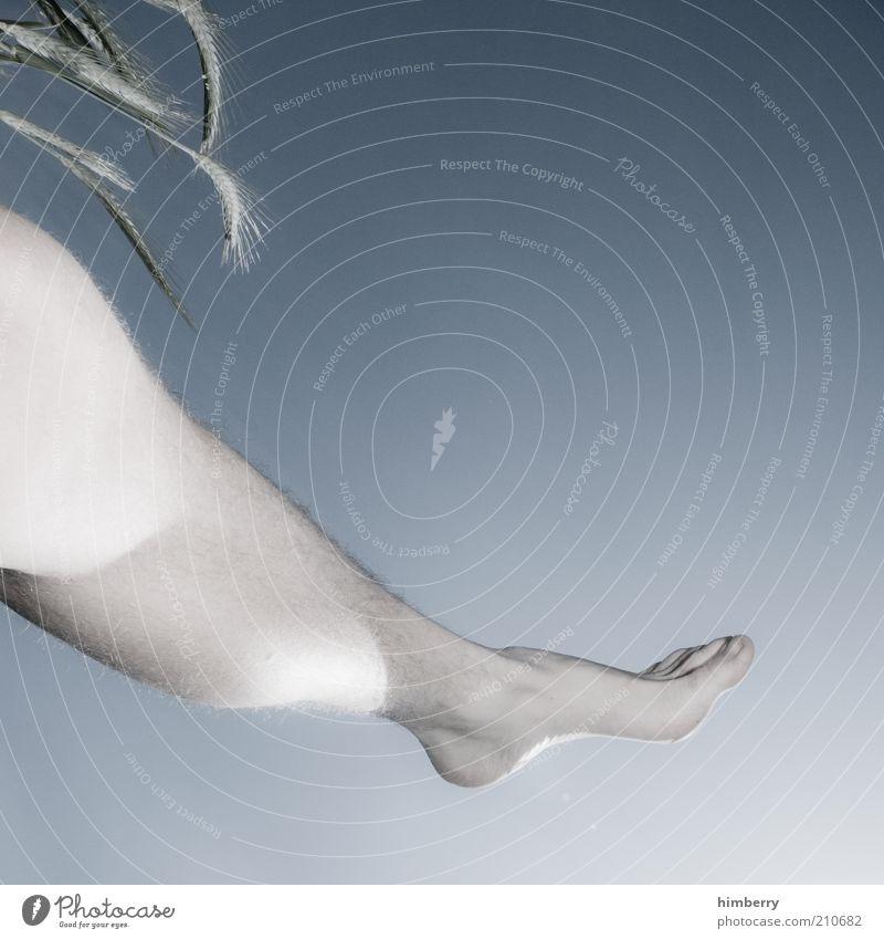 airwalk Lifestyle Stil Mensch Beine Fuß Umwelt Natur Pflanze Luft Himmel Wolkenloser Himmel Sommer Wetter Nutzpflanze muskulös Wade maskulin Farbfoto