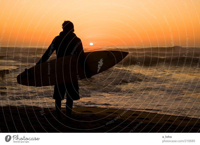 *100* in between dreams Ferne Meer Wellen Surfen Surfbrett maskulin Junger Mann Jugendliche Mensch Wolkenloser Himmel Horizont Sonnenaufgang Sonnenuntergang