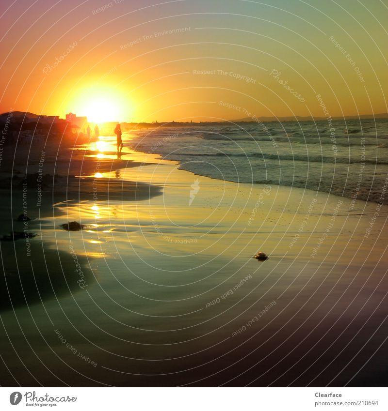 Ich will mehr Meer Wasser Wolkenloser Himmel Horizont Sonne Sonnenaufgang Sonnenuntergang Sonnenlicht Sommer Strand genießen Glück Zufriedenheit Lebensfreude