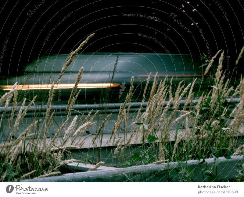 Zeitzonen Pflanze Gras Verkehr Verkehrsmittel Autofahren Straße Autobahn Fahrzeug PKW Geschwindigkeit grün schwarz silber weiß zeitlos Schnellstraße