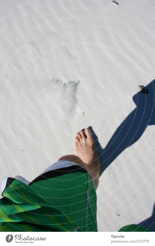 whitehaven beach Mensch maskulin Beine Fuß 1 Natur Urelemente Sand Sommer Strand Wüste gehen laufen wandern ästhetisch Glück Unendlichkeit heiß dünn