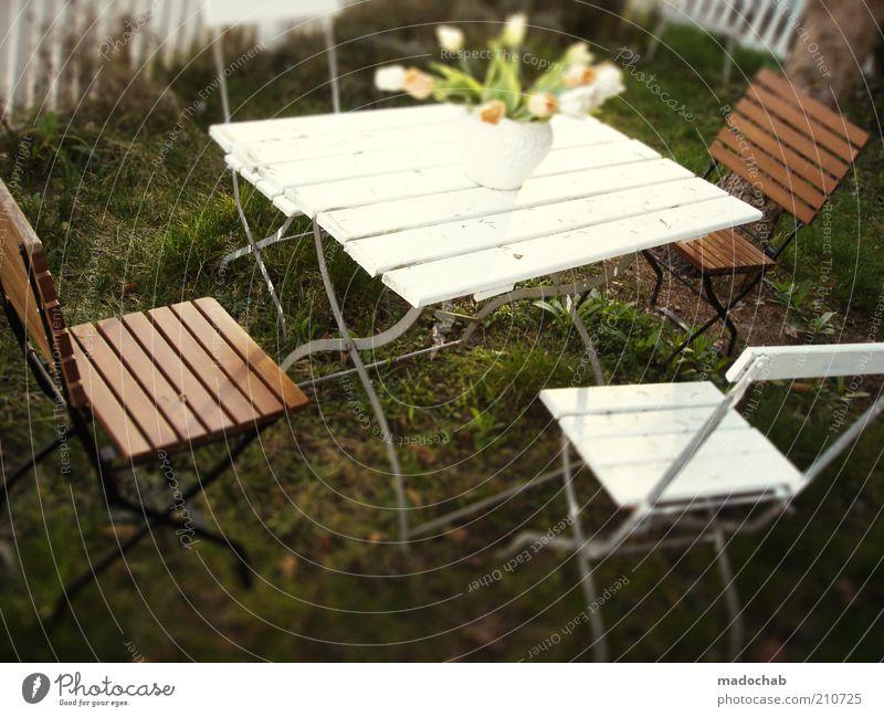 Tischlein deck dich Natur Blume Sommer Ferien & Urlaub & Reisen ruhig Erholung Garten Zufriedenheit Zusammensein Lifestyle ästhetisch Häusliches Leben Idylle