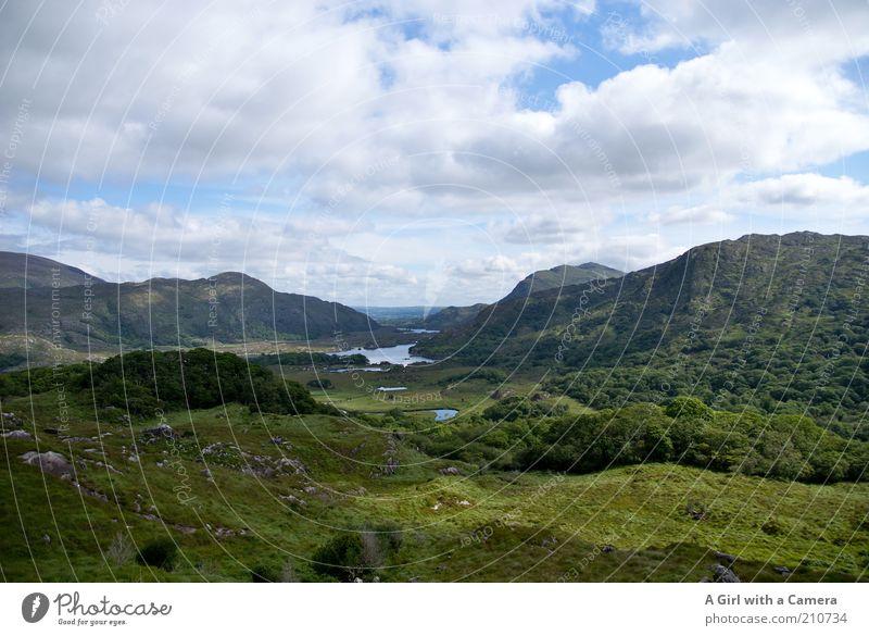 Ladies' View - Ring of Kerry - Irland Natur weiß Sonne grün blau Pflanze Sommer Ferien & Urlaub & Reisen Wolken Ferne Wald Wiese Berge u. Gebirge träumen See Landschaft