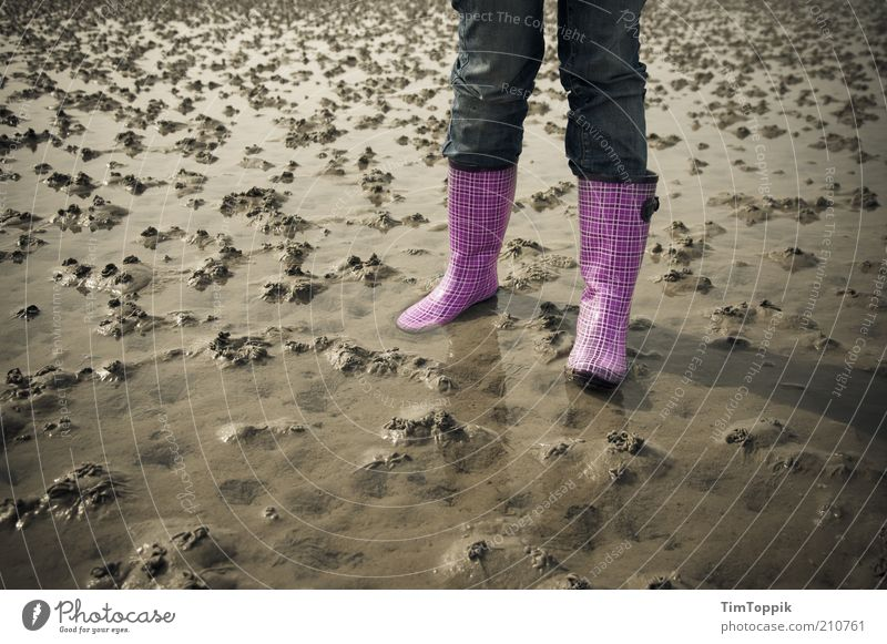 Ey, Watt jetzt! Mensch Ferien & Urlaub & Reisen Sommer Meer Strand Einsamkeit Erholung Sand Küste Deutschland Schuhe rosa nass wandern stehen Jeanshose