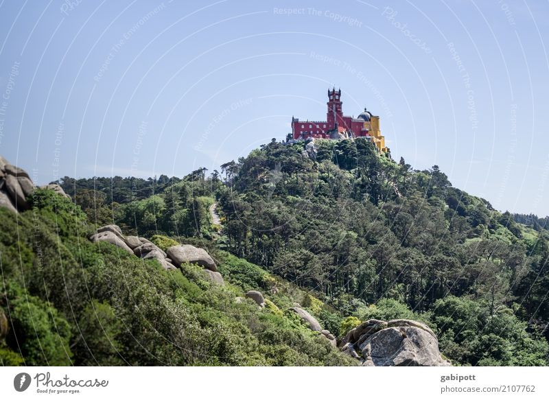 Palácio da Pena Himmel Natur Ferien & Urlaub & Reisen Pflanze Sommer Landschaft Erholung ruhig Wald Berge u. Gebirge Umwelt Tourismus Felsen Ausflug