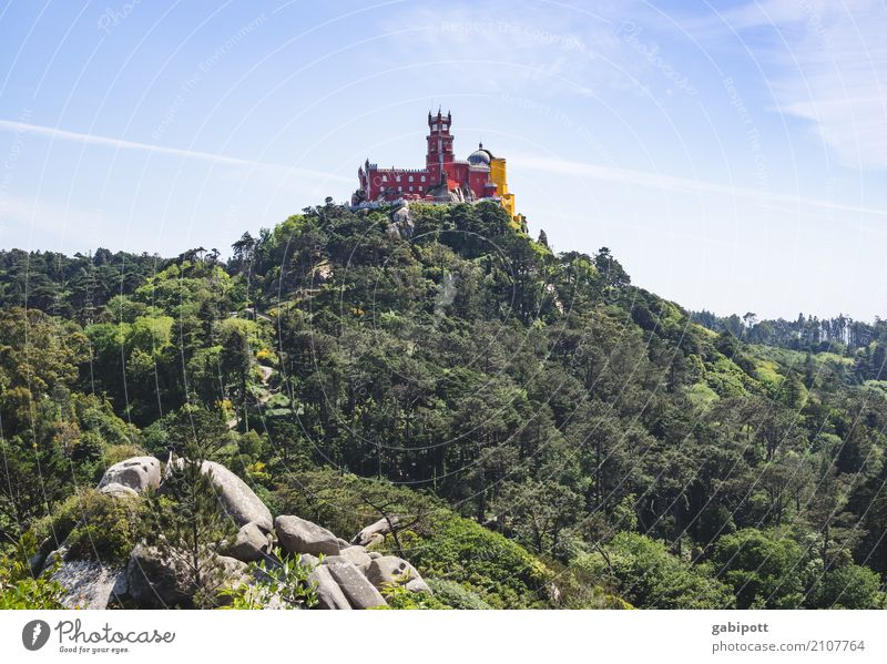 Sintra - Palacio de Pena Himmel Natur Ferien & Urlaub & Reisen blau Sommer grün Landschaft Erholung Ferne Wald Berge u. Gebirge Reisefotografie Umwelt Frühling