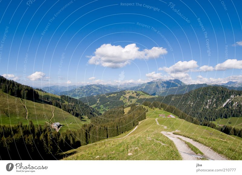 Bergweg Himmel Natur schön Ferien & Urlaub & Reisen Sommer Wolken Ferne Erholung Umwelt Landschaft Berge u. Gebirge Freiheit Wege & Pfade Horizont