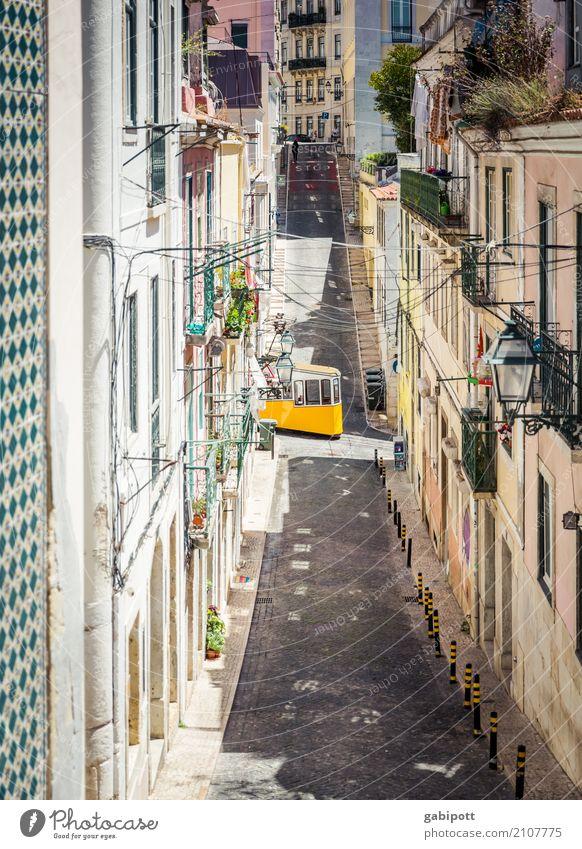 Lissabon Ferien & Urlaub & Reisen Stadt Straße gelb Wege & Pfade Tourismus Fassade Ausflug Verkehr frisch Fröhlichkeit Freundlichkeit Hügel Sommerurlaub