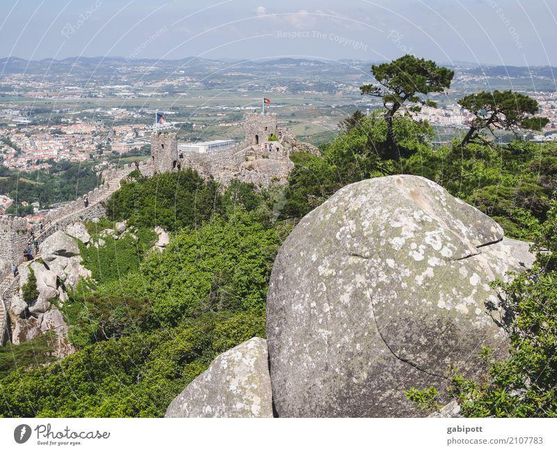 Sintra - die andere Seite Natur Ferien & Urlaub & Reisen blau Sommer grün Landschaft Erholung ruhig Ferne Wald Reisefotografie Umwelt natürlich Tourismus Stein