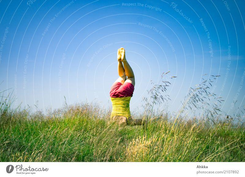 Sommerspäße II Mensch Natur Jugendliche blau Junge Frau grün Erholung Freude Leben Gesundheit Gras Glück außergewöhnlich frei frisch