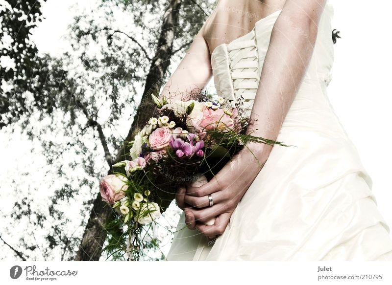 Braut mit Brautstrauß Frau Mensch Jugendliche weiß Baum Liebe feminin Gefühle Glück Zusammensein Erwachsene Rücken Hochzeit frisch Fröhlichkeit Kleid