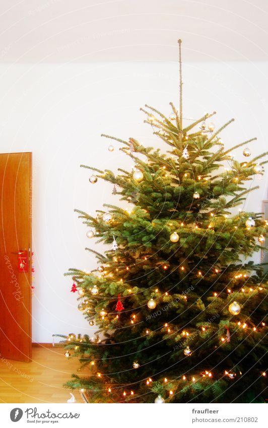 merry big christmas Weihnachten & Advent grün weiß Baum Winter gelb braun hell Zusammensein glänzend leuchten Dekoration & Verzierung Tür gold hoch Lebensfreude