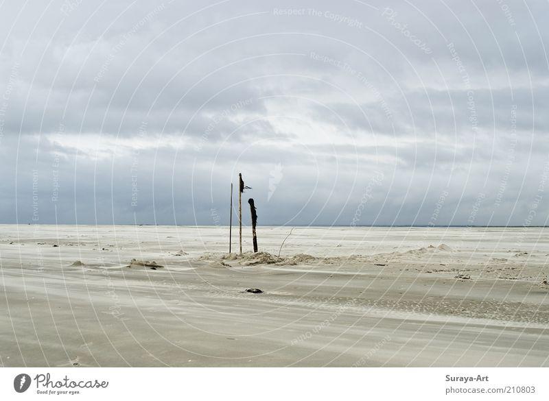 Seelenweite Ferien & Urlaub & Reisen Tourismus Ausflug Ferne Sommerurlaub Strand Insel Natur Landschaft Sand Himmel Wolken Wind Nordsee Unendlichkeit natürlich