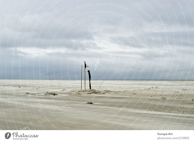 Seelenweite Natur Himmel weiß blau Strand Ferien & Urlaub & Reisen Wolken Ferne Wege & Pfade Sand Landschaft Stimmung Wind Ausflug leer
