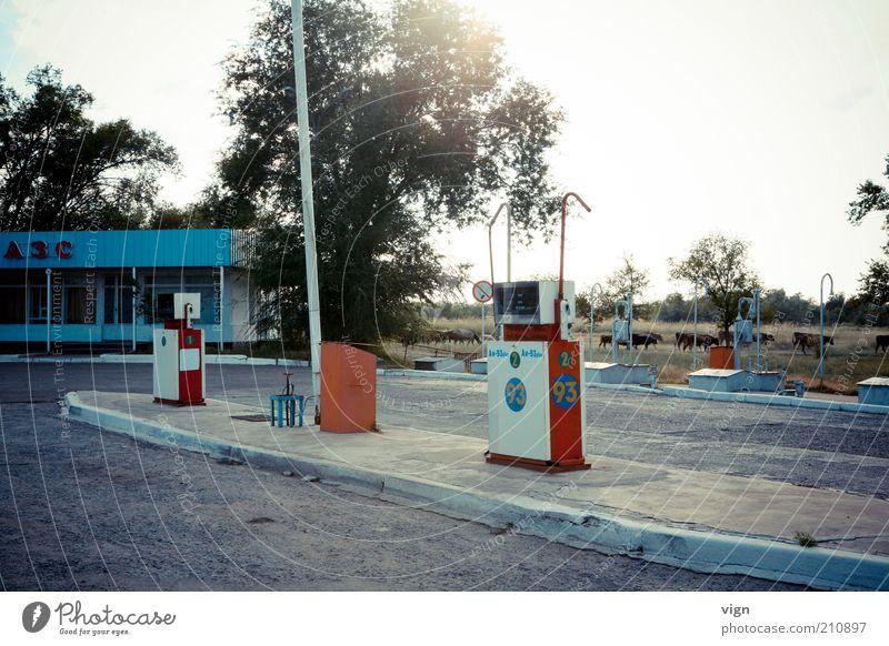 Biosprit Natur Kasachstan Tankstelle Roadtrip Farbfoto Außenaufnahme Menschenleer Abend Ferien & Urlaub & Reisen Zapfsäule Roadmovie authentisch unterwegs