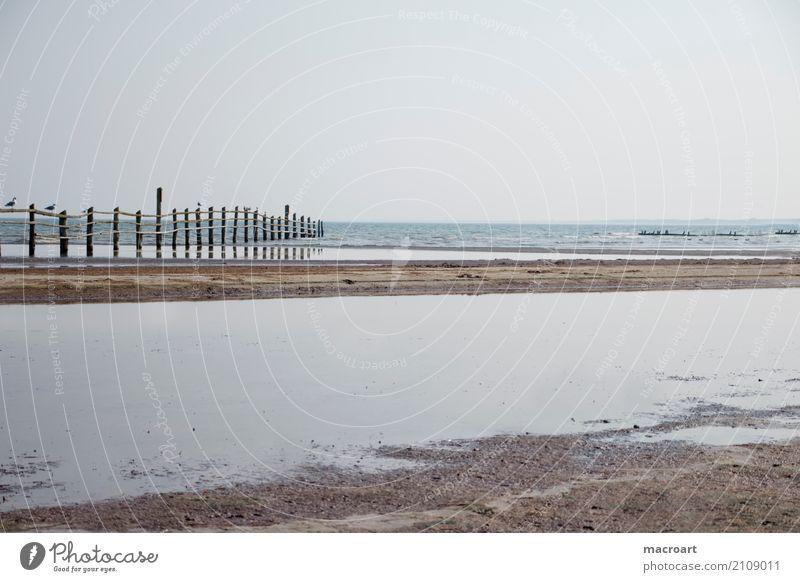 Sandstrand mit Holzzaun Stand Ebbe Flut See Ostsee Nordsee Naturschutzgebiet Zaun Wasser Gewässer Meer Wolken grau Himmel Sommer Erholung ruhig Pause ausruhend