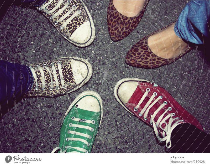 meine schuhe <3 Mensch Jugendliche grün rot Freude Erwachsene feminin grau Mode Fuß 18-30 Jahre Zusammensein Schuhe maskulin modern Lifestyle