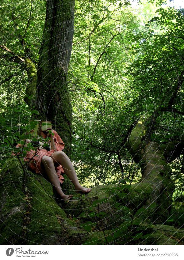 Grünes Paradies #2 Mensch feminin Frau Erwachsene 1 Natur Sommer Schönes Wetter Baum lesen Handtuch orange Buch Beine liegen Ast Baumstamm Idylle Erholung