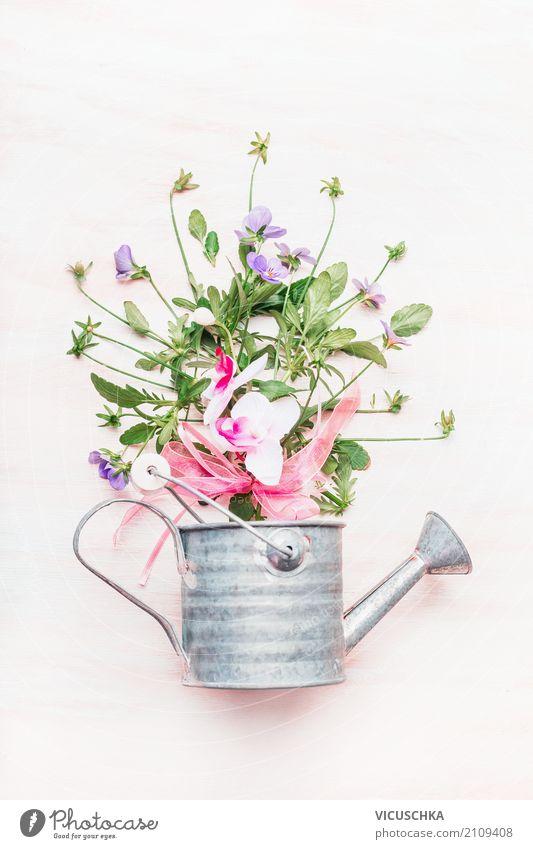 Gießkanne mit Blumen Stil Design Freizeit & Hobby Garten Natur Pflanze Dekoration & Verzierung Blumenstrauß Gartenarbeit Geschenk Farbfoto Studioaufnahme