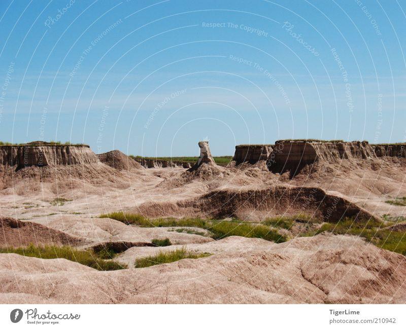 Ödland Stierjagd Umwelt Natur Landschaft Erde Sand Luft Wolkenloser Himmel Sonnenlicht Sommer Schönes Wetter Wärme Dürre Gras Felsen Schlucht Ferne