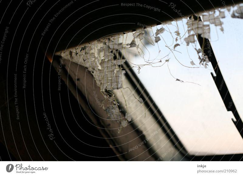das Fenster zum Dach Raum Dachboden Ruine alt dreckig dunkel kalt kaputt Verfall Dachfenster Luke verfallen Bildausschnitt Fensterplatz Fensterblick abblättern