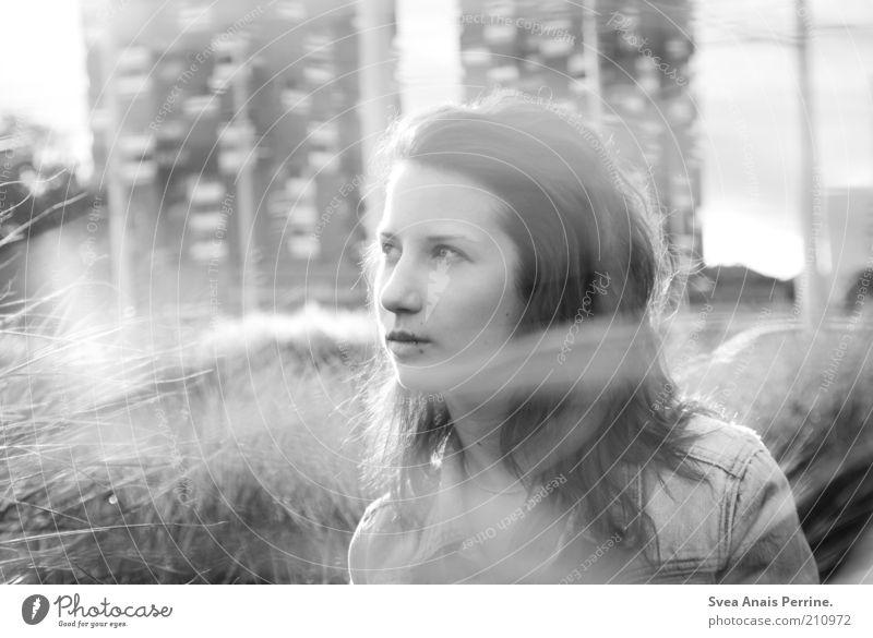 großstadtgeflüster. Mensch Jugendliche Stadt Pflanze Erwachsene feminin Gras Denken Park hoch Hochhaus 18-30 Jahre Junge Frau Sehnsucht langhaarig Frauengesicht