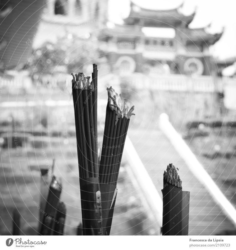 Räucherstäbchen Penang Malaysia Asien Menschenleer Tempel Pavillon Sehenswürdigkeit Rauchen alt ästhetisch Ferne historisch nah Stadt grau Duft entdecken