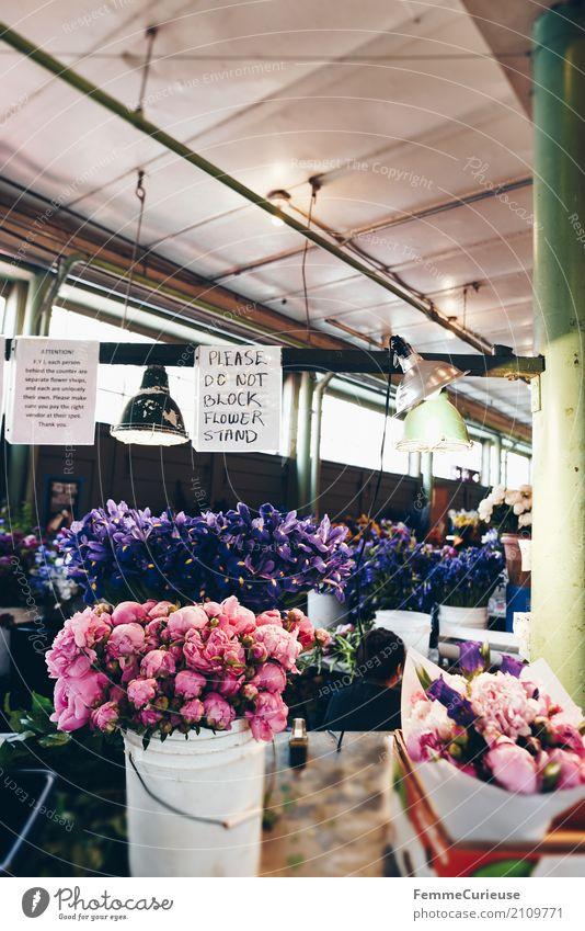 Roadtrip West Coast USA (259) Pflanze Duft Markthalle Markttag Seattle Pfingstrose Eimer Blumenstrauß Hinweisschild Decke Hängelampe Farbfoto Innenaufnahme Tag