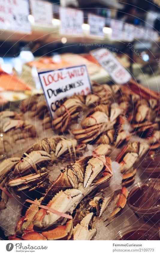 Roadtrip West Coast USA (244) Lebensmittel Fisch Meeresfrüchte Ernährung genießen Krabbe Fischmarkt Markthalle Markttag Preisschild US-Dollar Englisch Westküste